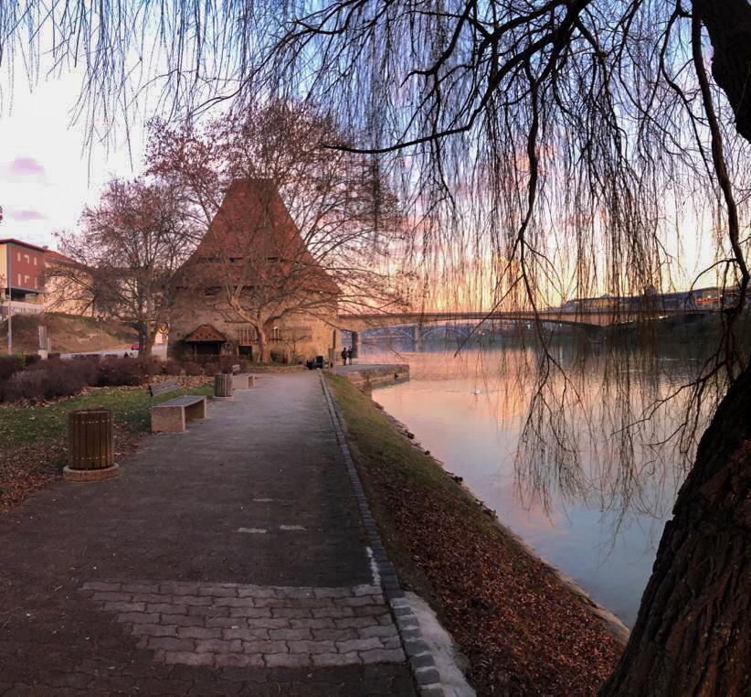 paesaggio lungo il fiume Drava a maribor in Slovenia