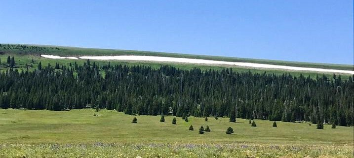 strade panoramiche americane bighorn national forest wyoming