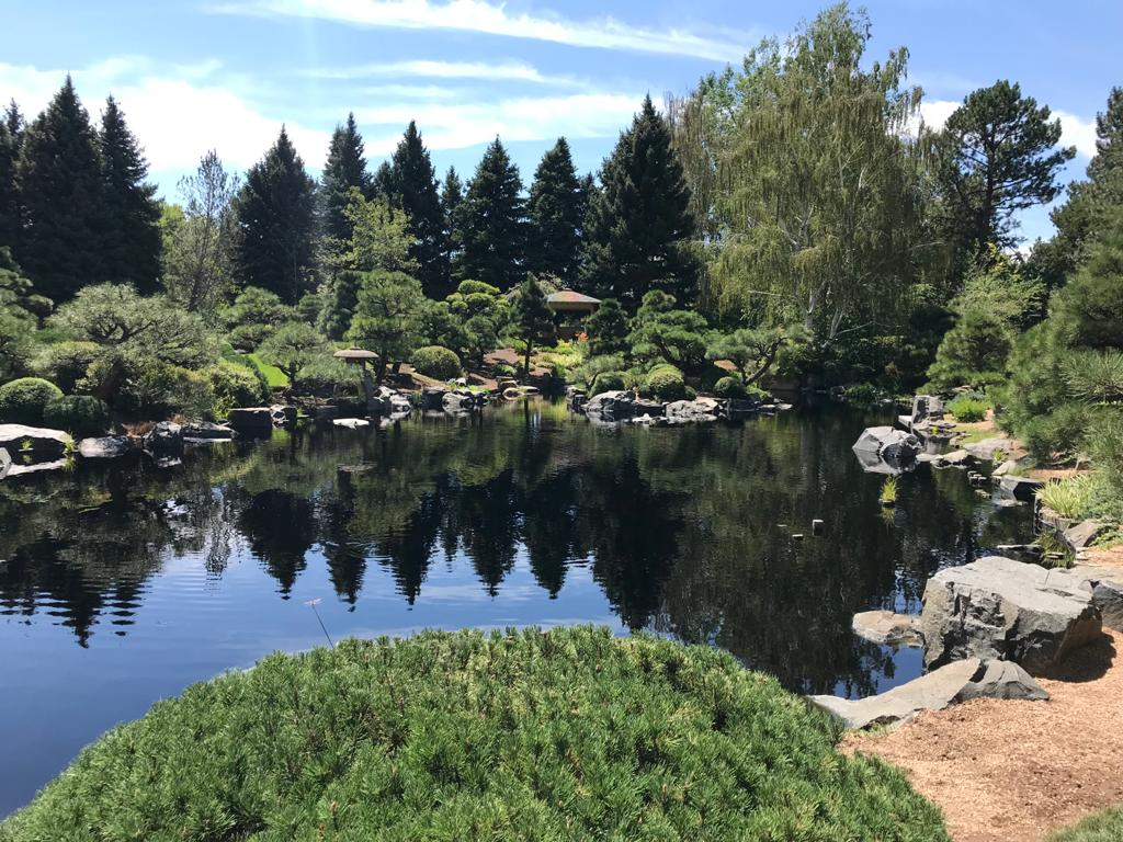 panorama del giardino giapponese nel giardino botanico di Denver