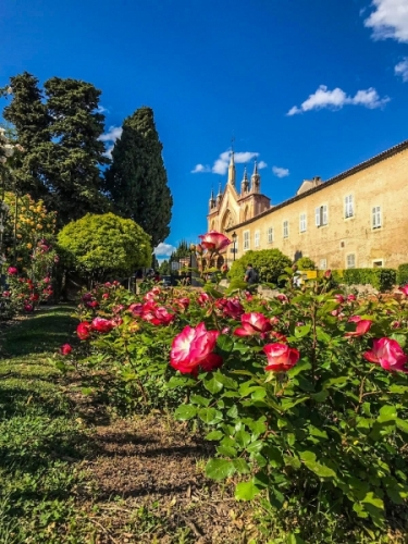 Il monastero di Cimiez-Nizza visto dai suoi giardini