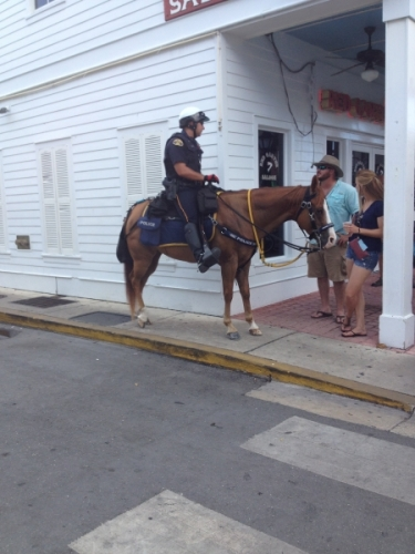 Polizia a cavallo a Key West Miami